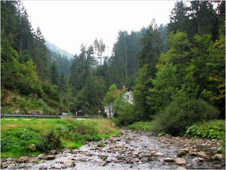 valley in the black forest