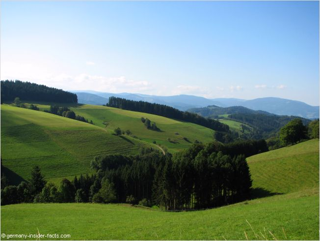 view over the central black forest to the feldberg