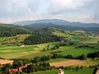 scenery at the black forest germany