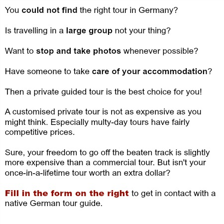 private tour guide offer