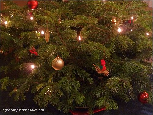 part of a christmas tree