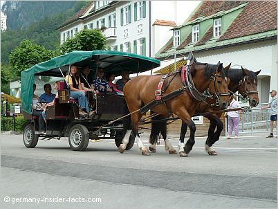 horse carriage to neuschwanstein